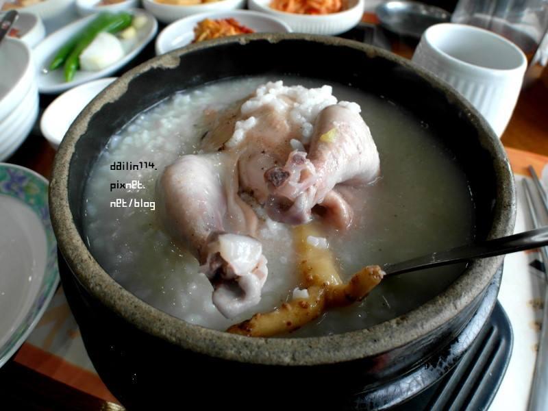 【濟州島美食】秘菀人參雞湯 |必吃CP值超高,吃完還可以出來賞櫻花! @GINA環球旅行生活