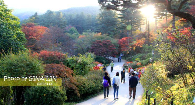 京畿道景點》美到不行的晨靜樹木園(아침고요수목원) 韓劇信義、原來是美男MV、電影情書、朝鮮名偵探、韓國綜藝節目슈퍼맨이 돌아왔다 超人回來了 拍攝景點 @Gina Lin