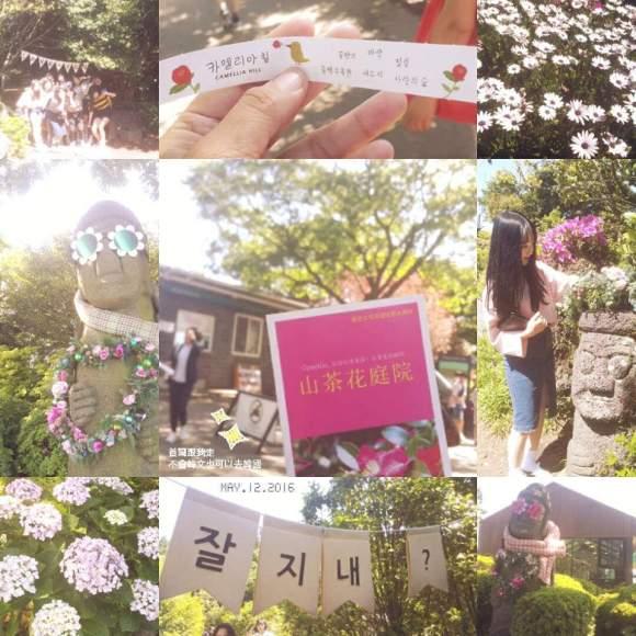【濟州島景點】Camellia Hill 山茶花庭園|濟州茶花樹木園.超熱門婚紗拍攝地!情侶、學生郊遊外拍地 (少女時代潤娥CF廣告拍攝地) @GINA環球旅行生活