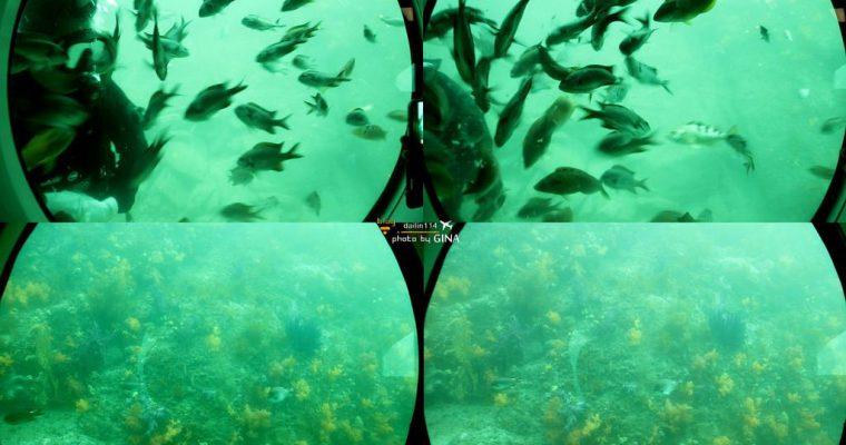 西歸浦景點》搭潛水艦 / 潛水艇 海底看魚冒險不用全身濕搭搭 서귀포잠수함 @Gina Lin