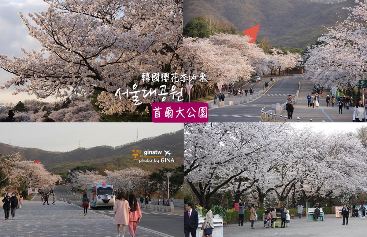 【首爾大公園】韓國賞櫻|果川市滿滿的櫻花路,超好拍超美! @GINA環球旅行生活