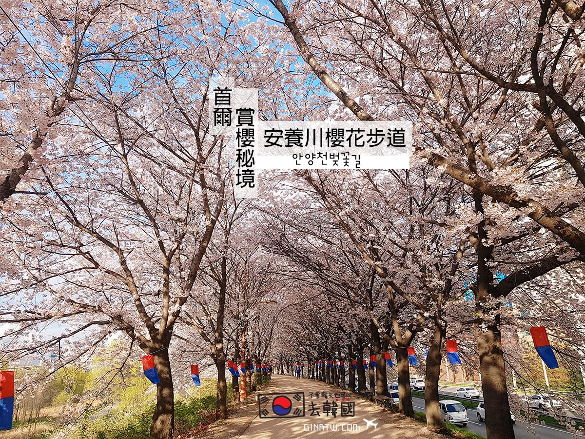 【首爾賞櫻祕境】安養川櫻花散步道|首爾地鐵5號線|楊坪、梧木橋站|附交通方式、地圖|EDIYA COFFEE咖啡廳 KAKAO FRIENDS聯名款 @GINA環球旅行生活|不會韓文也可以去韓國