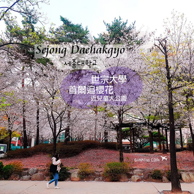 【韓國首爾賞櫻景點】世宗大學校園|兒童大公園|附交通方式、地址 @GINA LIN