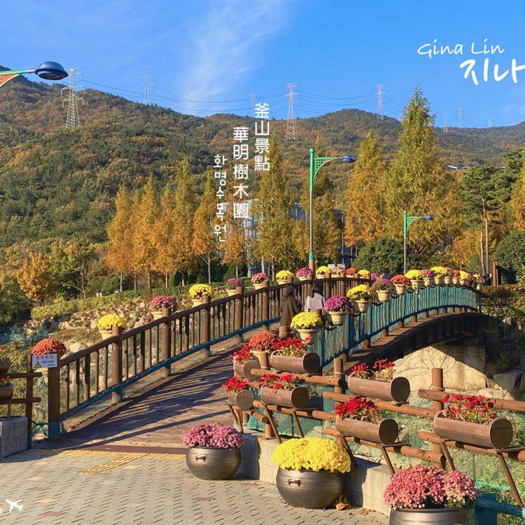 【釜山私房景點】華明樹木園,超美超好拍!免費IG網美打卡必拍|交通方式、營業時間、地圖地址 @GINA LIN