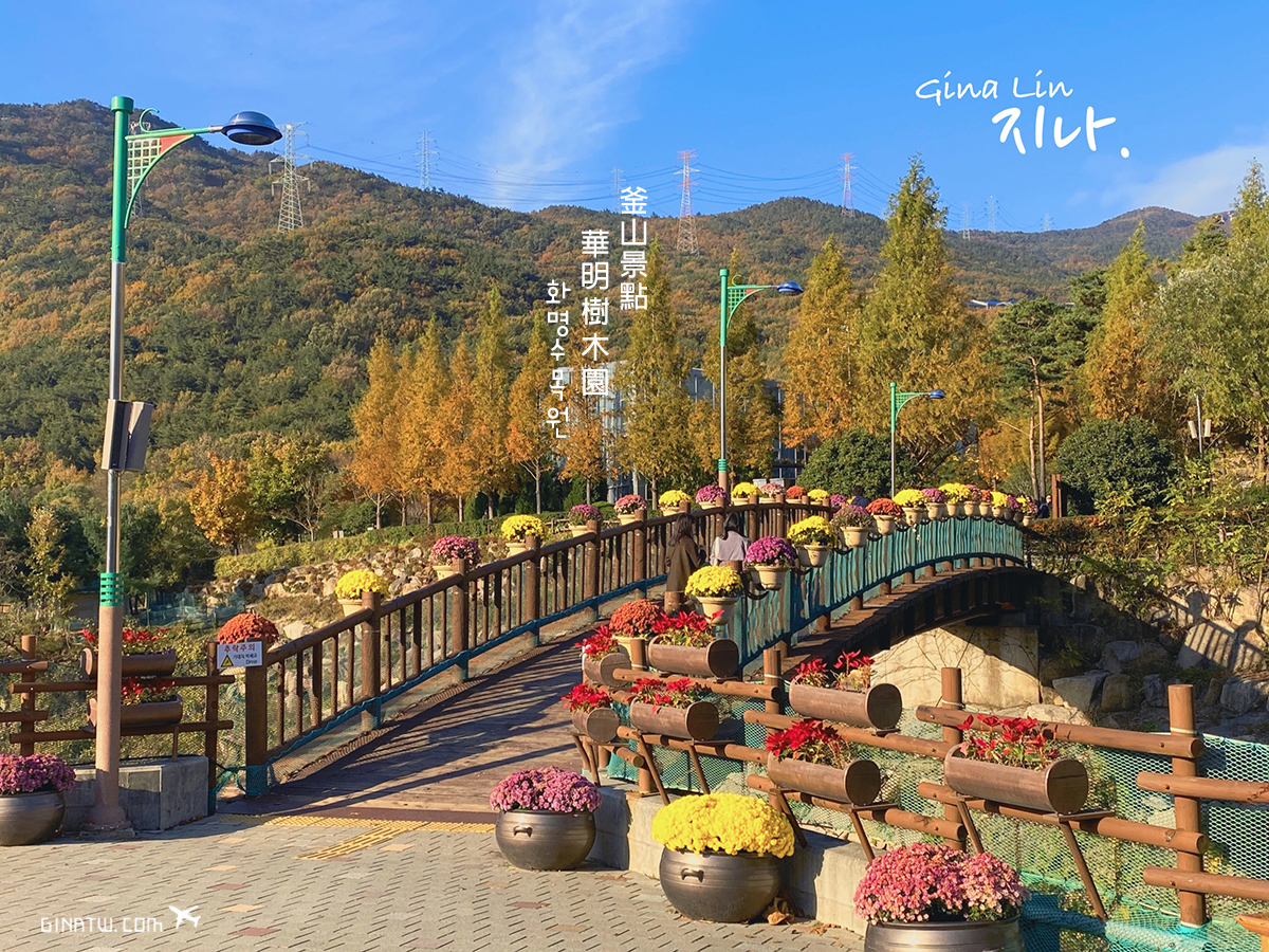 【釜山私房景點】華明樹木園,超美超好拍!免費IG網美打卡必拍|交通方式、營業時間、地圖地址 @GINA環球旅行生活