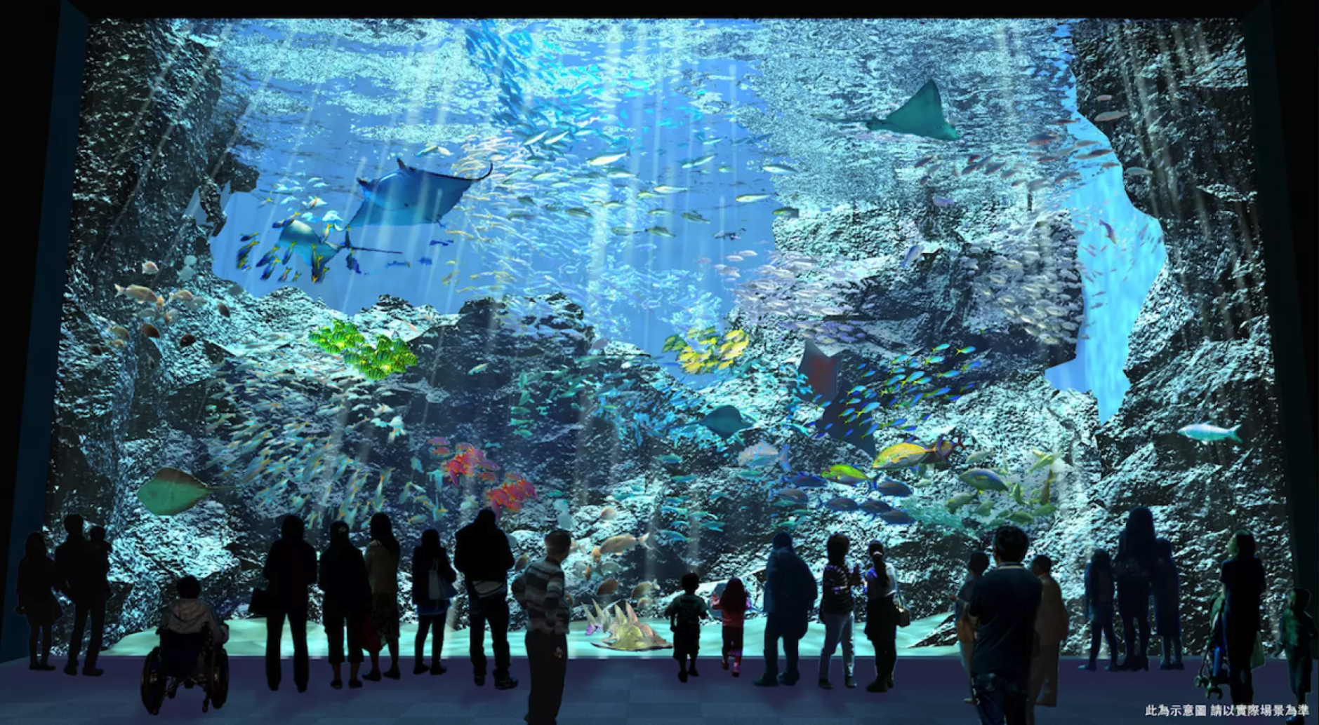 【2020桃園新景點】青埔Xpark水族館| 都會型水生公園|KKDAY、KLOOK線上門票優惠票卷 @GINA LIN