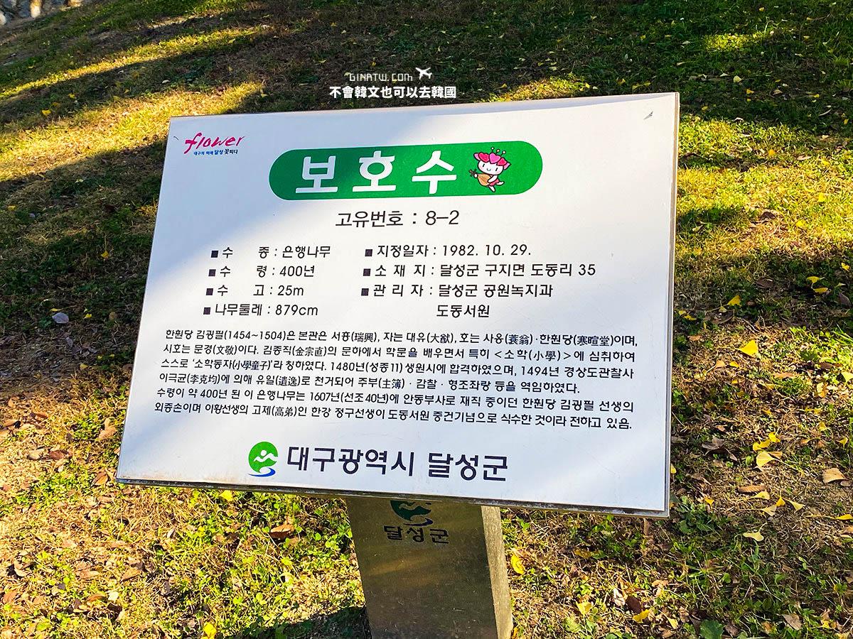 【大邱景點】道東書院|400年歷史銀杏大樹|UNESCO世界文化遺產 @GINA環球旅行生活|不會韓文也可以去韓國 🇹🇼
