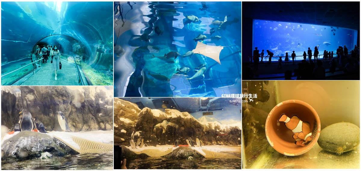 【屏東墾丁景點】國立海洋生物博物館-超美的海底隧道、可愛企鵝、白鯨|2021表演時刻表|夜宿海生館|魚你同行-後場探秘餵魚體驗 @GINA環球旅行生活